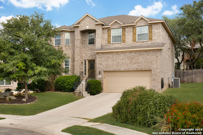 Stone Oak Single Family Home New: 511 Sedberry Ct