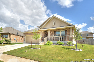 New Braunfels Single Family Home New: 3157 Barker Cypress