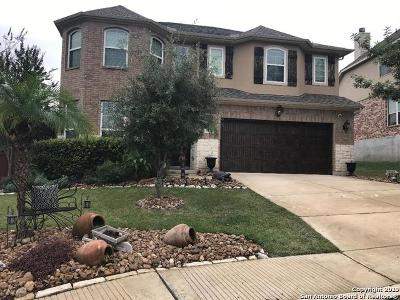 San Antonio Single Family Home New: 3322 Brooktree Ct
