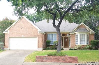 San Antonio Single Family Home New: 1125 Mesa Blanca