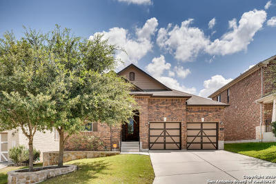 San Antonio Single Family Home New: 1438 Saddle Blanket