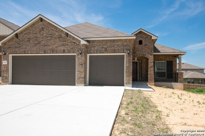 New Braunfels Single Family Home New: 3617 Blue Cloud