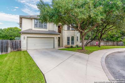 San Antonio Single Family Home New: 4703 Shavano Bark