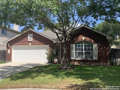 San Antonio Single Family Home New: 11863 Knobsby Way