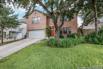 San Antonio Single Family Home New: 9335 Wildstone Pl