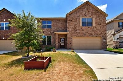 San Antonio Single Family Home New: 13326 Flora Springs