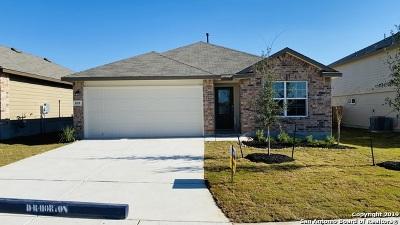 San Antonio Single Family Home New: 810 House Sparrow