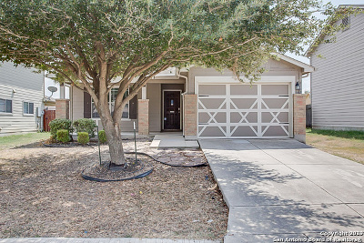 San Antonio Single Family Home New: 8767 Sunview Park