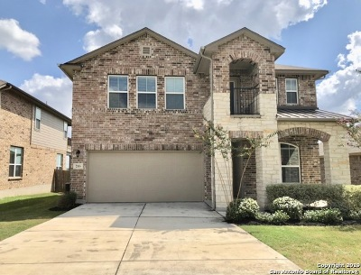 Cibolo Single Family Home New: 216 Pevero