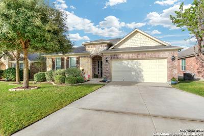 San Antonio Single Family Home New: 15919 Sight Scape