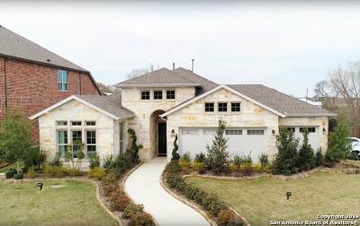 San Antonio Single Family Home New: 4130 Monteverde View