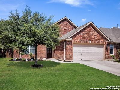 San Antonio Single Family Home New: 13011 Palatine Hill