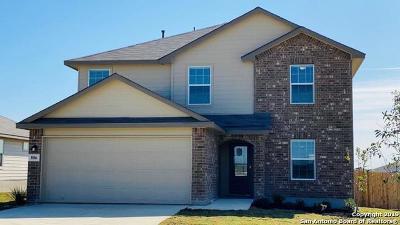 San Antonio Single Family Home New: 806 House Sparrow