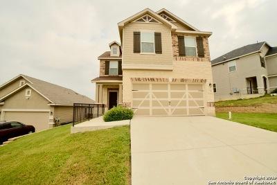 San Antonio Single Family Home New: 7311 Palomino Bay