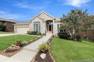 Helotes Single Family Home New: 8414 Magdalena Run