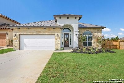 New Braunfels Single Family Home New: 873 Lorikeet Ln