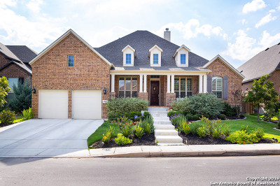 Boerne Single Family Home New: 28835 Porch Swing