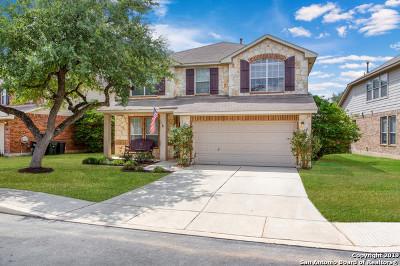 San Antonio Single Family Home New: 26719 Trinity Hill