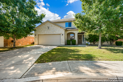 Bexar County Single Family Home New: 14514 Clementine Ct