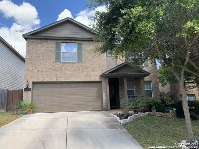 Bexar County Single Family Home New: 10822 Antares Forest