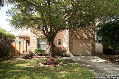 New Braunfels Single Family Home New: 370 Copper Mtn