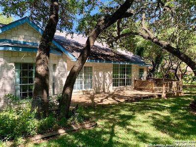 Single Family Home New: 9618 Boerne Spring