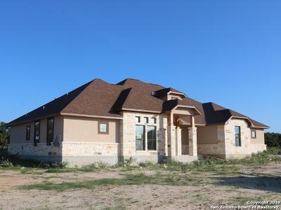 Floresville TX Single Family Home New: $378,800