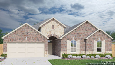 New Braunfels Single Family Home New: 331 Allemania Dr