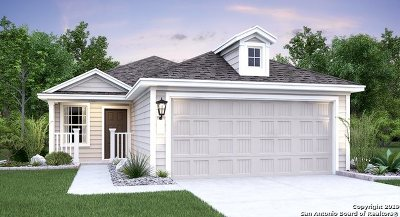 Converse Single Family Home New: 8507 Cassia Cove