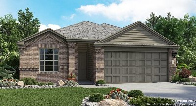 Converse Single Family Home New: 8402 Cassia Cove