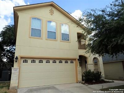 San Antonio Single Family Home New: 7522 Eagle Ledge