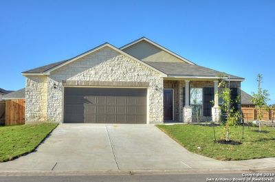 New Braunfels Single Family Home New: 841 Gray Cloud Dr
