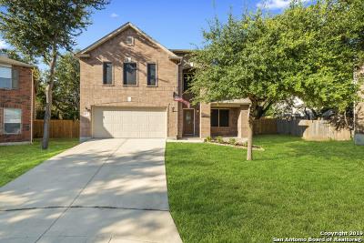 San Antonio Single Family Home New: 7215 Bluemist Pt
