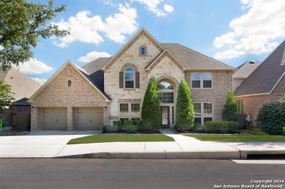 San Antonio TX Single Family Home New: $559,000