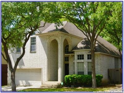 San Antonio TX Single Family Home New: $325,000