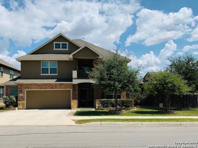Cibolo Single Family Home New: 408 Cactus Flower