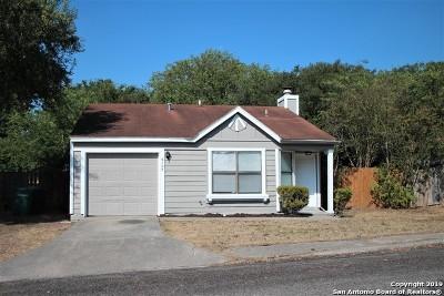 San Antonio Single Family Home New: 4107 Sunrise Pass