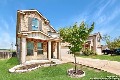 San Antonio Single Family Home New: 9731 Marbach Canyon