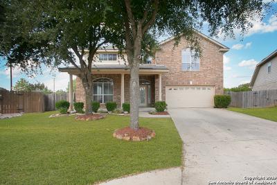 San Antonio Single Family Home New: 24558 Walnut Pass