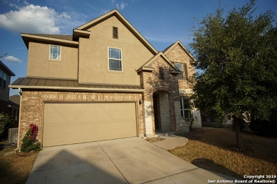 San Antonio Single Family Home New: 7618 Redrock Vista
