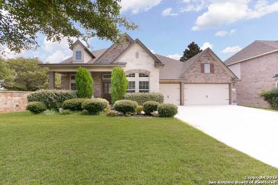 San Antonio Single Family Home New: 24838 Cloudy Creek