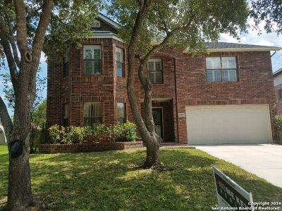 San Antonio Single Family Home New: 10826 Deercliff Pass