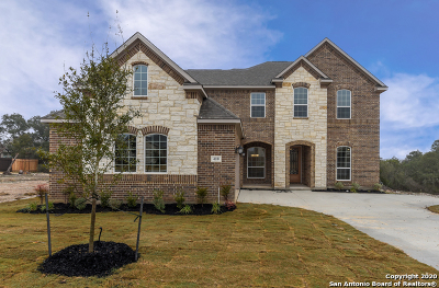 Bexar County Single Family Home For Sale: 410 Tahoe