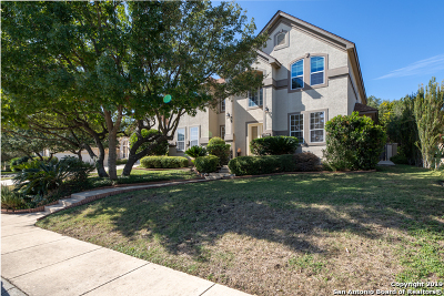 Single Family Home New: 3007 Ivory Crk