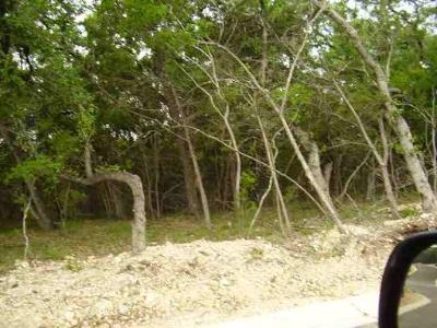 Residential Lots & Land For Sale: 83 Turnberry