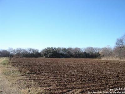 Farm & Ranch For Sale: 13675 Kearney Rd
