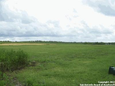 Farm & Ranch For Sale: 11080 Ware Seguin Rd