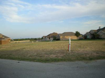 San Angelo Residential Lots & Land For Sale: 3022 Champions Circle
