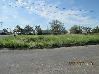 San Angelo Residential Lots & Land For Sale: 801 S Hill St