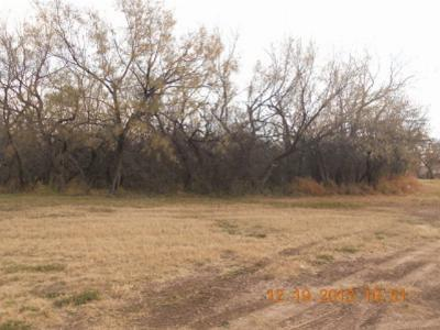 San Angelo Residential Lots & Land For Sale: 1000 Concho Park Dr